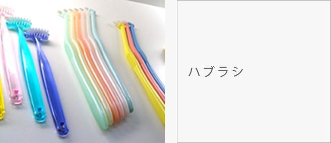 dental02