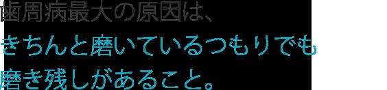 shi_title3
